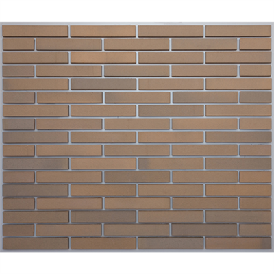 Image for Facing Clay Brick - VENICE CLINKER