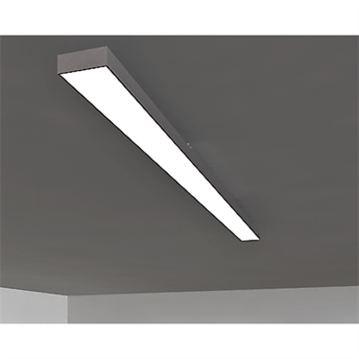 Image for Ceiling lights Pline module isolated