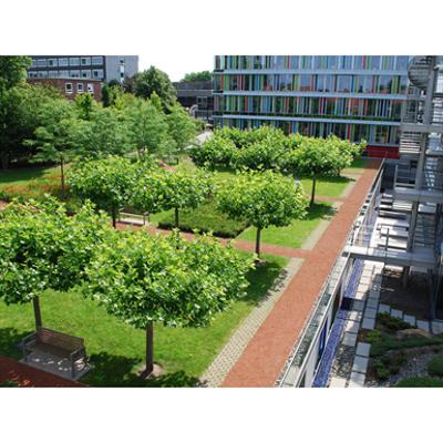 Image for Landscape Roof System Solution