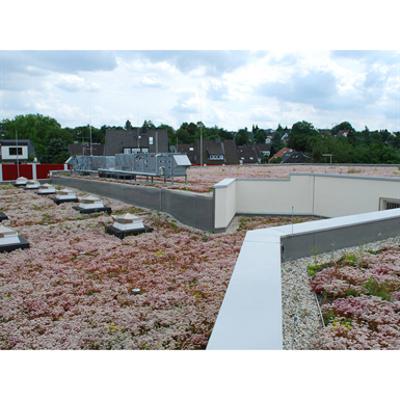 Image for Blue Roof Meander FKM 30 System Solution