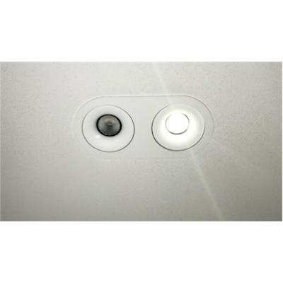 Image for Hybrid Point Light