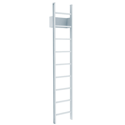 Image for 500 Access Ladder