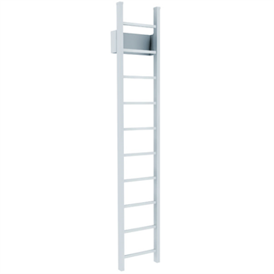 Image for 501 Access Ladder