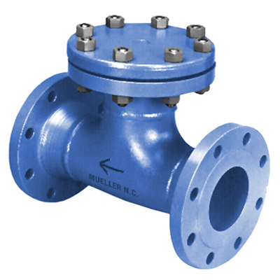 Image for Class 150 Fabricated Tee Strainers - 41T
