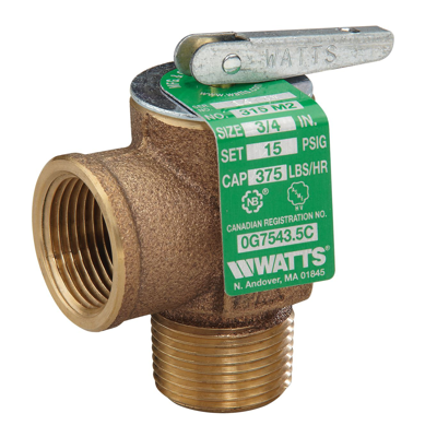 Image for Steam Safety Relief Valves, ASME Section IV - 315-M2