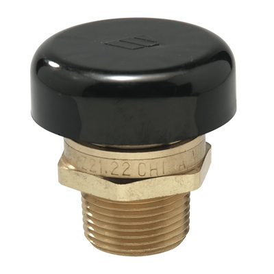 Image for Lead Free* Water Service Vacuum Relief Valves - LFN36