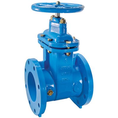 Image for NRS Flanged Gate Valves - 405-NRS-RW