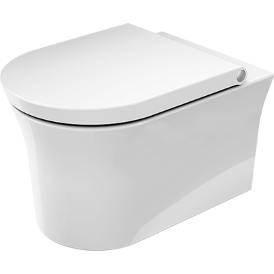 Image pour 257609 Wall-mounted-toilet