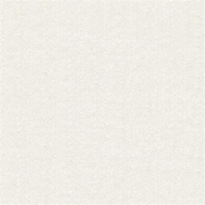 Image pour Membrane BMI System Paradiene 30.1 GS - White Noxactiv