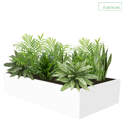 Image for Cabinet Top Trough - Mixed Live Planting - 1000mm x 500mm x 200mm