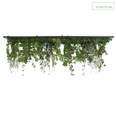 Obrázek pro Replica Foliage Ceiling Raft - 1500mm x 750mm