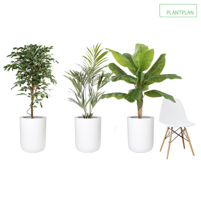 Image for 3 x White Gloss Planters - Mixed Replica Planting - 1600mm