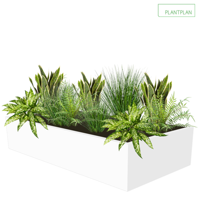 Obrázek pro Cabinet Top Trough - Mixed Replica Planting - 1000mm x 500mm x 200mm