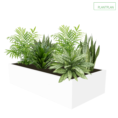 Image for Cabinet Top Trough - Mixed Live Planting - 800mm x 400mm x 200mm