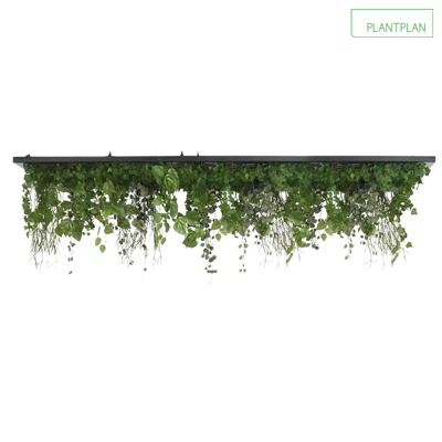Image for Replica Foliage Ceiling Raft - 2000mm x 1000mm