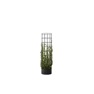 Image pour dB Flower Trellis 420x1600 Black