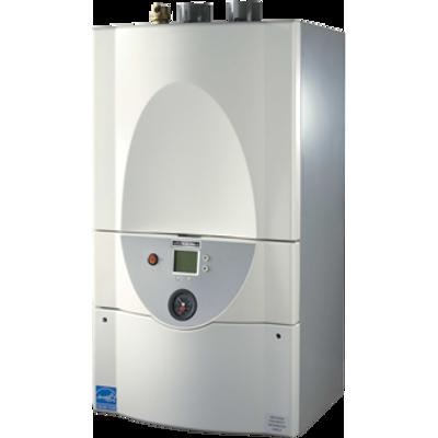bild för Brute™ LX Series Boiler, 50000 Btu/hr - 225000 Btu/hr