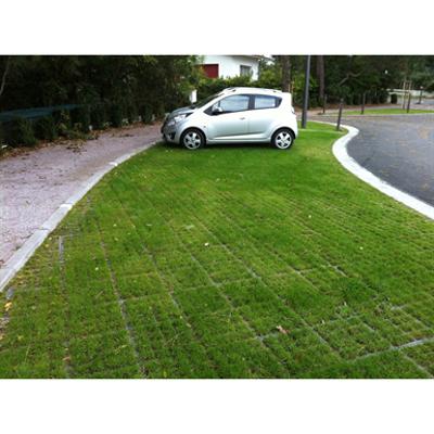 Image for 100% vegetal on fertile foundation - complete O2D system