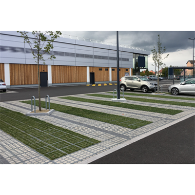 Image for Grassed with 2 paved paths and 2 paved lines