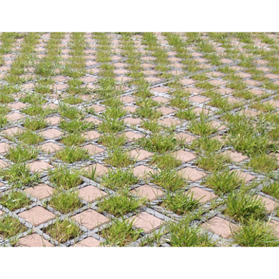 Image for Checkerboard grass / paving stones