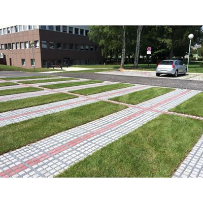 Image for TTE grid