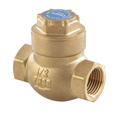 Image for Swing Check Valve