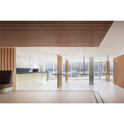 Image for LINEA 2.4.3 Suspended ceiling