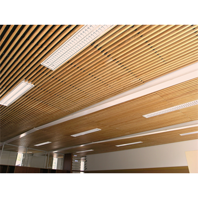 Image for LINEA 2.4.5 Suspended ceiling