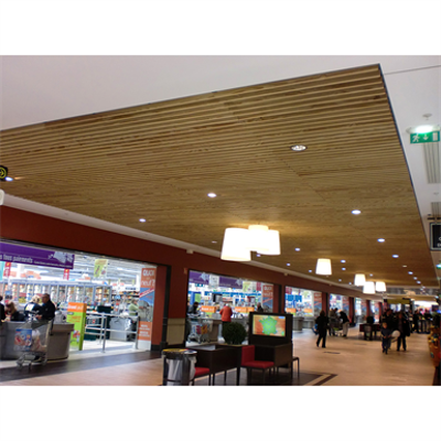Image for LINEA 2.6.10 Suspended ceiling