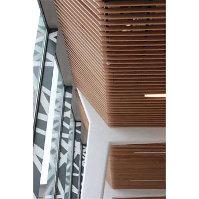 Image for LINEA 2.6.8 Suspended ceiling