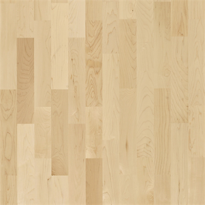 Image for Hard Maple Activity Floor