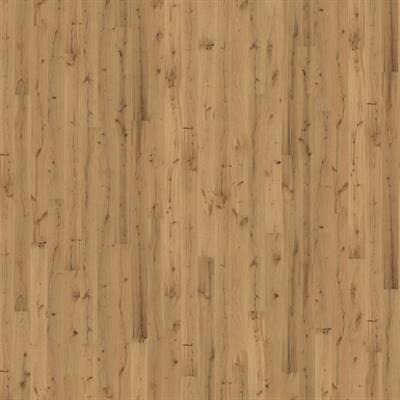 Image for Oak Pallido