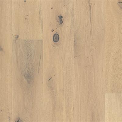 Image for Oak Abalone