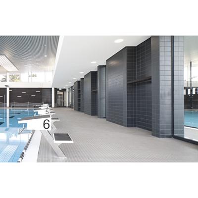 Swimming pool edge system Wiesbaden图像