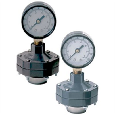 bild för SCH80 CPVC/PVC Gauge Guard w/ PTFE/EPDM/FKM Diaphragm