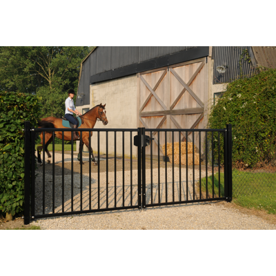 Image for Bardo swing gate
