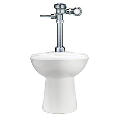Image for WETS 2003.1001 Royal 111 1.28 Manual Flushometer with Floor Mount Top Spud Toilet