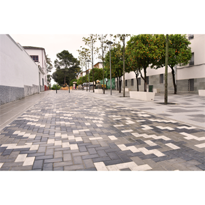 Image for Pavers holland