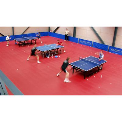 Image for Taraflex Table tennis