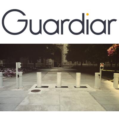 Image for GUARDIAR Sentry Retractable Bollards