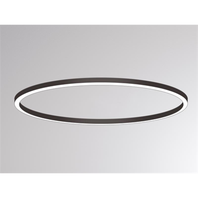 Image for Ride Ring Surface