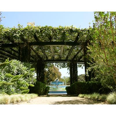 Image for greenscreen®:  Horizontal Trellis