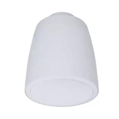 """imagem para ESP-62TW: 6-1/2"""" Coaxial Pendant Speaker (ESP Series)"""