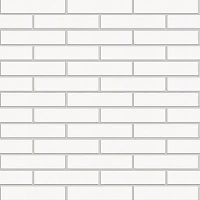 Image for Alaska Facing Brick