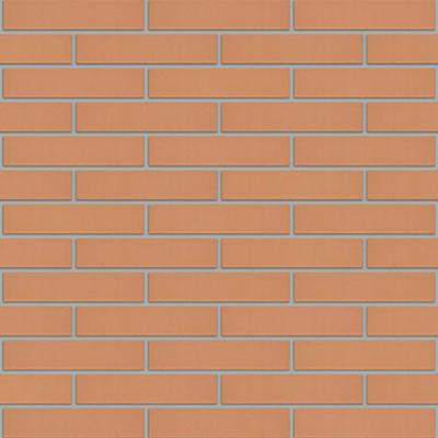 Image for Salmon Facing Brick