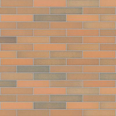 Image for Mink Flashed Klinker Facing Brick
